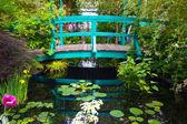 Monets Garden — Stock Photo