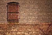 窗口和砖 — 图库照片