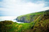 Irland — Stockfoto