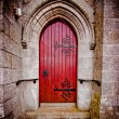Church Door — Stock Photo #23928617