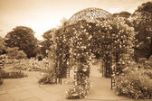 Rose pavillon — Stockfoto