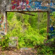 Graffiti in woods — Stock Photo