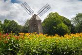 Moulin à vent de long island — Photo