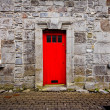 Red Door — Stock Photo #29754221