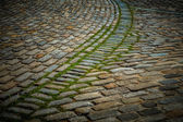 Cobblestone Path — Stock Photo