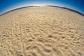 Fisheye Beach — Stock Photo
