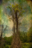 Grunge Style Tree — Stock Photo