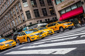 NYC Taxicabs — Stock Photo