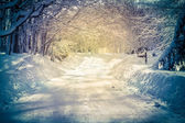 Snowy Road — Foto de Stock