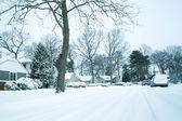 Blizzardarka plan christmas dekorasyon — Stok fotoğraf