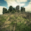 Stock Photo: Irish Castle