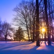 Snowy Sunset — Stock Photo