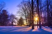 Snowy Sunset — Stock Photo