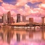 Tampa Florida — Stock Photo #40981875