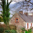 Stock Photo: Ireland Cottage