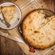 Chicken Pot Pie — Stock Photo #47760163