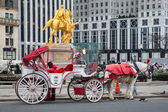 Horse-Drawn Carriage NYC — Stock Photo