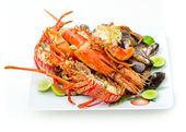 Lots of Sea Food — Stock Photo