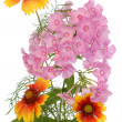 Celebratory bouquet of summer flowers — Stock Photo
