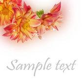 Holidays decorative beautiful card — Stock Photo