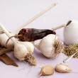 Garlic and dry spices — Stock Photo