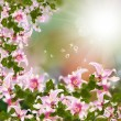 Exotic tropical flora background — Stockfoto