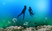 Underwater life — Stock Photo