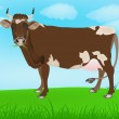 Cow over spring green meadow — Stock Photo #16192865