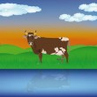 Dairy cows at river — Stock Vector #16247511