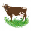 Stock Photo: Dairy cow over white background