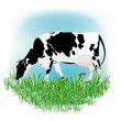 Стоковое фото: Dairy cow over white background
