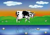 Dairy cow — Stock Vector