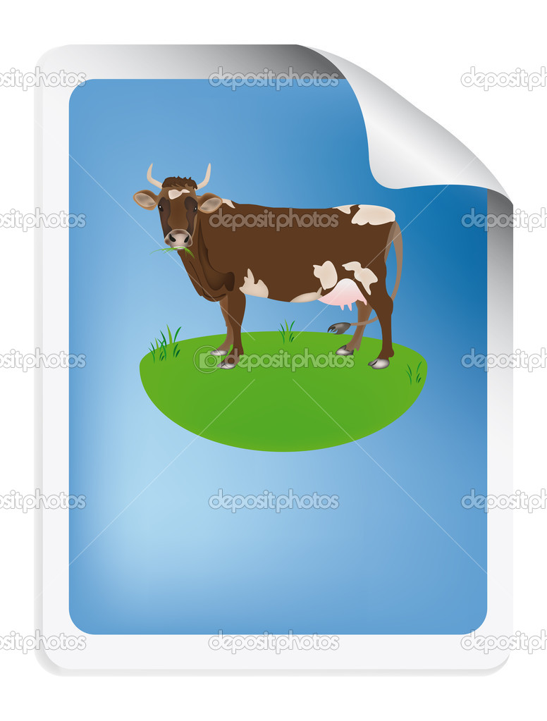 Natural dairy label with cow — Stock Photo #16283743