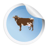 Sticker with a cow — Foto Stock