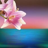 Lirio rosa exóticas flores sobre un fondo de mar al atardecer — Foto de Stock