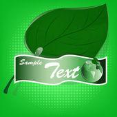 Green leaf.Ecology concept.Emblem banner.Vector — Stock Vector