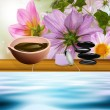 The spa procedure concept — Stock Photo