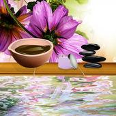 The spa procedure concept — Stock Photo