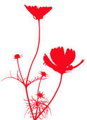 Abstract red flower on a white background — Stock Photo