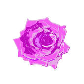 Beautiful pink rose on a white background.Vector — Stock Vector
