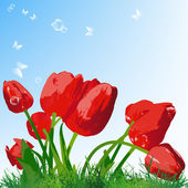 Beautiful red tulip on a green grass.Vector — Stock Vector