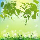 Spring nature background.Season nature.Vector — Stock Vector