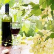 Bottle young wine and ripe grape.Wine background — Stockfoto