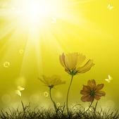 Nature season.Abstract summer background — Stock Photo