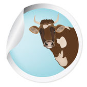 Label with a cow for packaging dairy products.Vector — Stock Vector