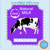 Tasty fresh delicious dairy food poster.Vector illustration — Stock Vector