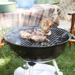 Barbecue in the summer garden — Stock Photo