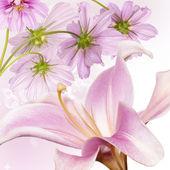 Flower beautiful border.Nature background — Stock Photo