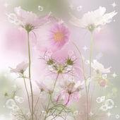 Flower beautiful card background — Стоковое фото