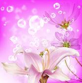 Květinové pozadí — Stock fotografie